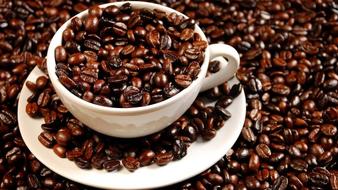 5012_Millions-of-coffee-beans-the-relaxing-moment-every-morning