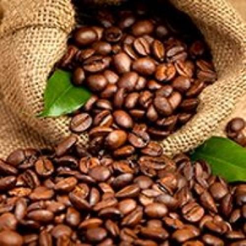coffee bean1