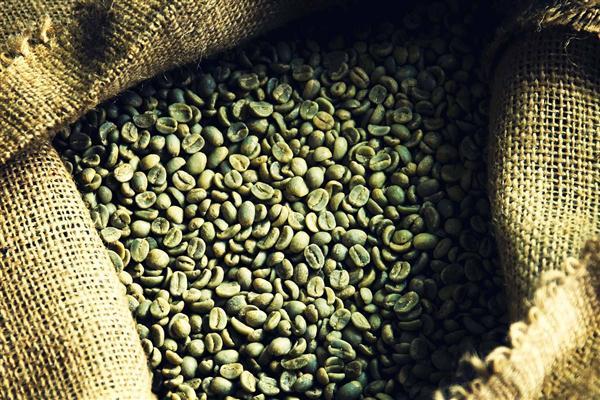 5_1green_beans