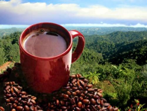 Puerto-Rican-coffee