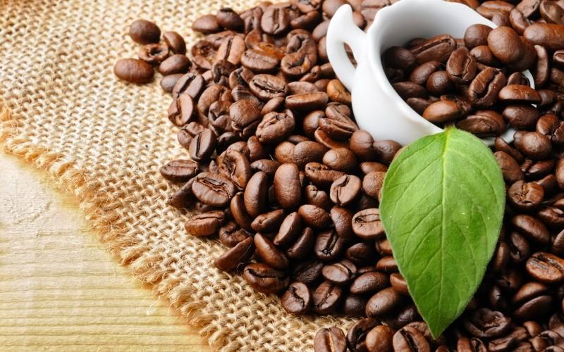 coffee bean (Custom)